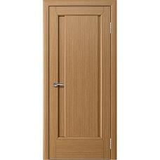 Дверь ДГ АГАВА