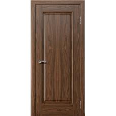 Дверь ДГ АИДА