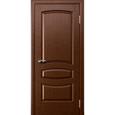 Дверь ДГ АСТЕРИЯ
