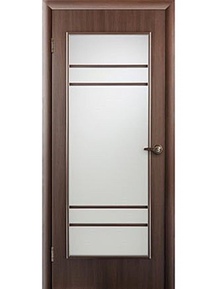 Остекленная дверь 30