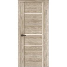 Дверь ЦДГ 02